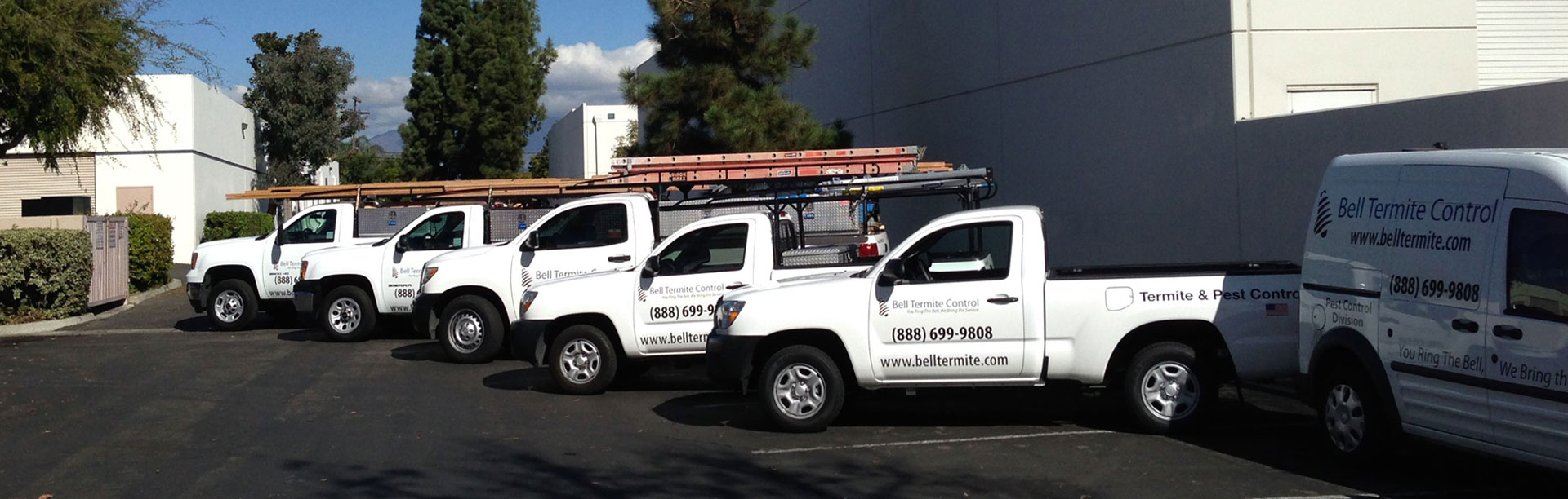 Free Termite Inspection in Rancho Cucamonga
